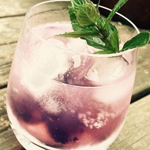 Other Scottish Gin
